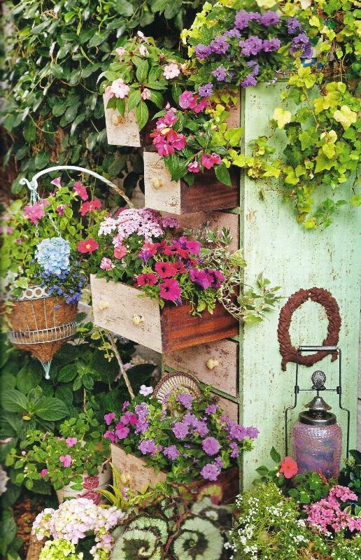 An old chest of drawers will certainly add interest. Growing vertically.