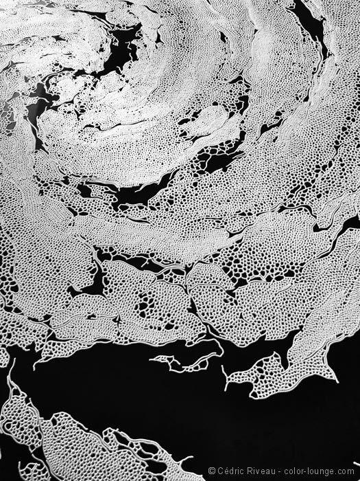 oeuvre de sel... par l'artiste japonais Motoi Yamamoto...