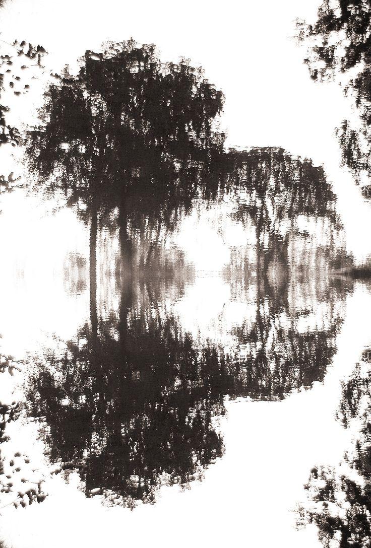 https://flic.kr/p/Mngrt3 | Sepia reflectie | Weerspiegelingen in het water