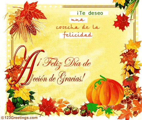 reflecciones de thanksgiving 2014 | FELIZ DIA DE ACCION DE GRACIAS - HAPPY THANKGIVING