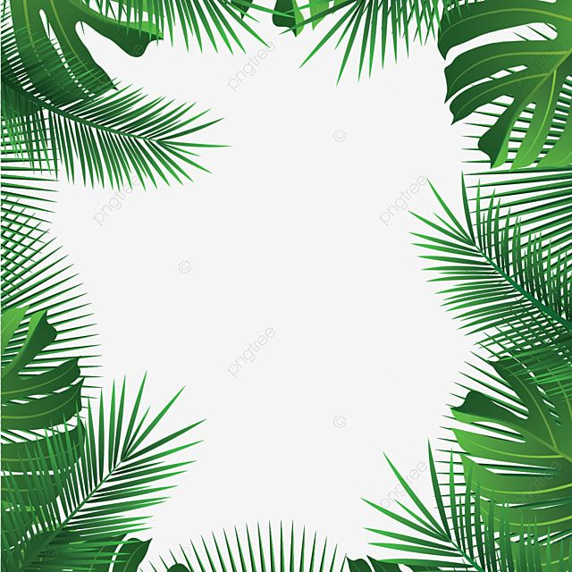 Tropical Leaves Frame Palm Summer Leaves Tropical Vector Png And Vector With Transparent Background For Free Download Bunga Tropis Bingkai Bunga Wallpaper Tropis
