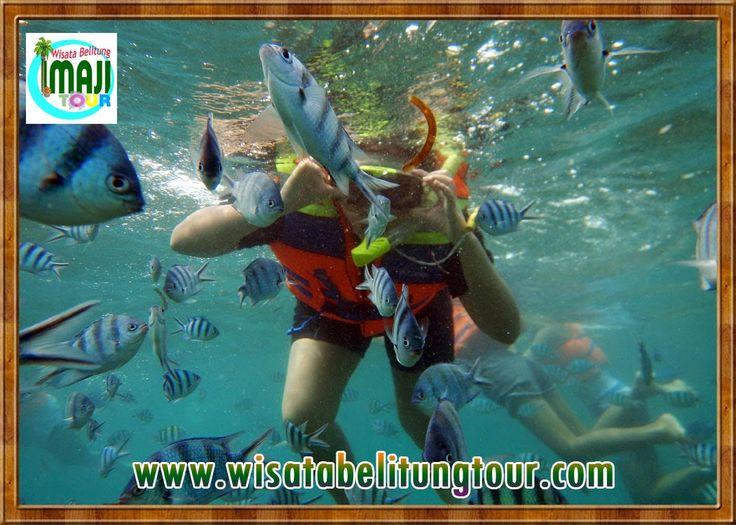Pulau Lengkuas adalah salah satu destinasi utama sekaligus icon dari wisata pulau Belitung. Banyak sekali keindahan yang bisa didapatkan mulai dari mercusuar, ikan terumbu karang, pasir pantai yang halus dan putih, hingga coral yang cantik.
