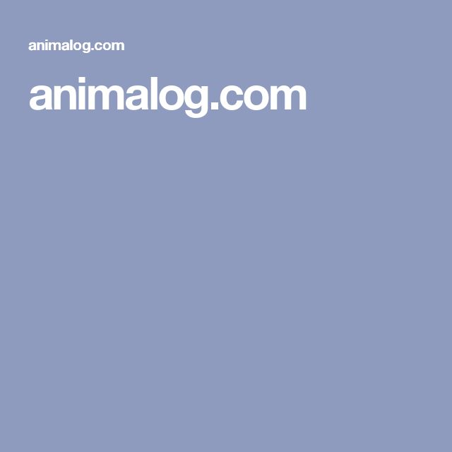 animalog.com