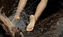 """""""Ik zie het lichaam liggen. Ze is blootsvoets. Ik zie nergens schoenen."""" Margots lijk word naakt gevonden aan de Schelde."""