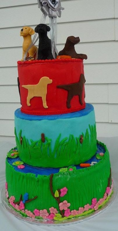 Cake I made for our Labrador Clubs 25th Specialty Anniversary.
