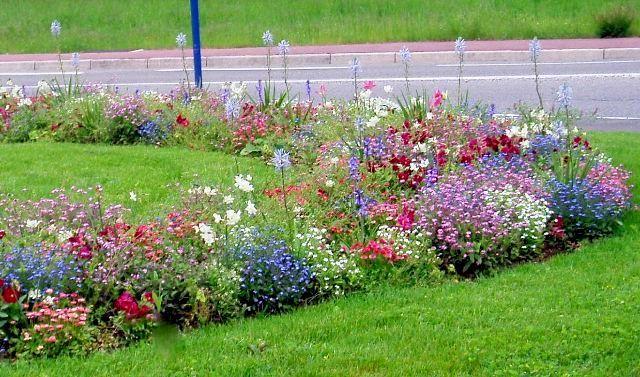 Dise o de canteros con flores buscar con google flores for Canteros de jardin