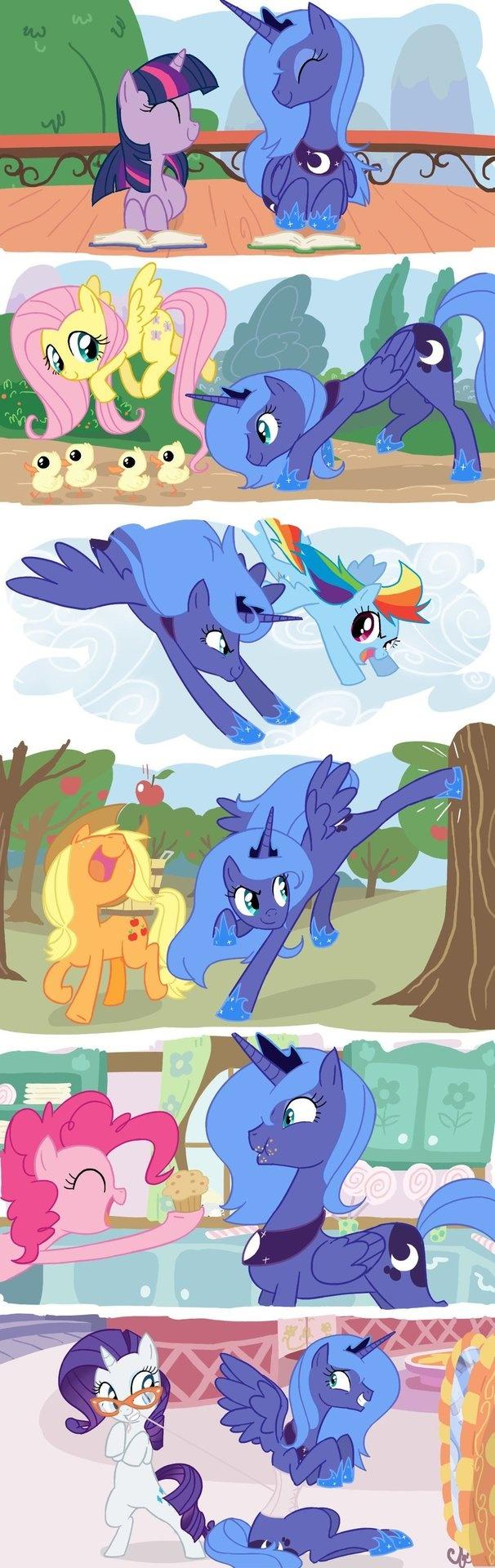 Luna's new friends...