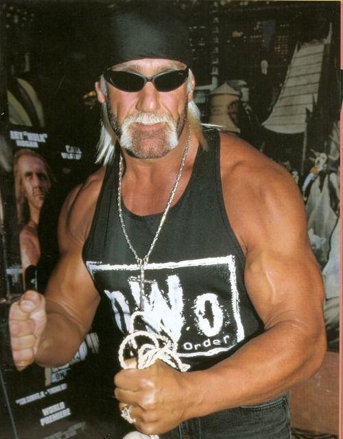 Randy orton hulk hogan-4652