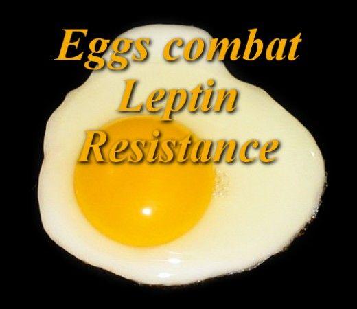 Eggs Combat Leptin Resistance