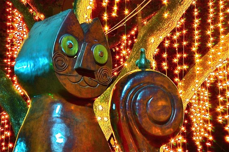 Gato Tejada, by Hernán Romero. #cali #colombia #travel