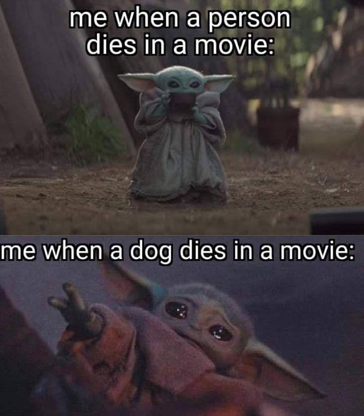 Pin By Leticia Camarillo On Baby Yoda Yoda Funny Yoda Meme Funny Memes