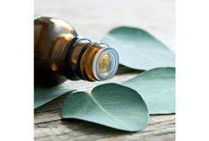 Aromathérapie : les 10 huiles essentielles à avoir dans sa pharmacie