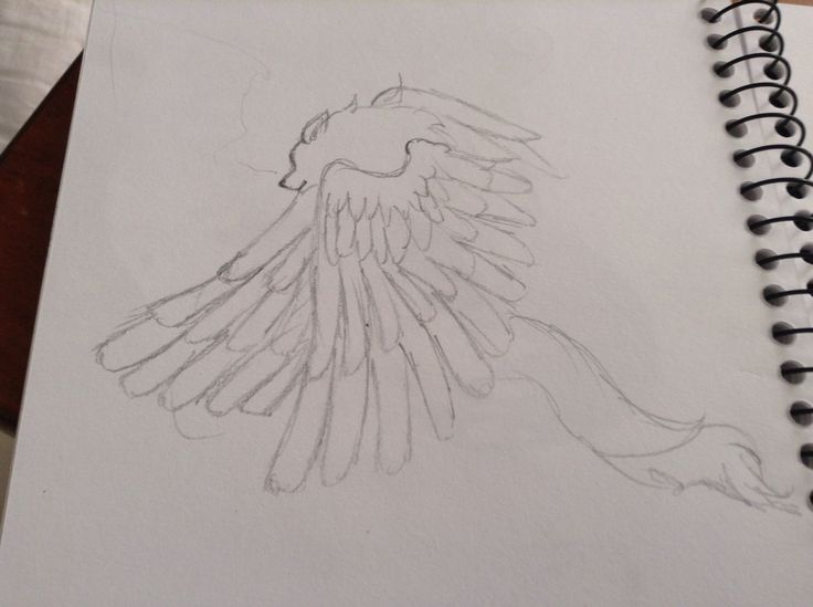 Angelic wolf.