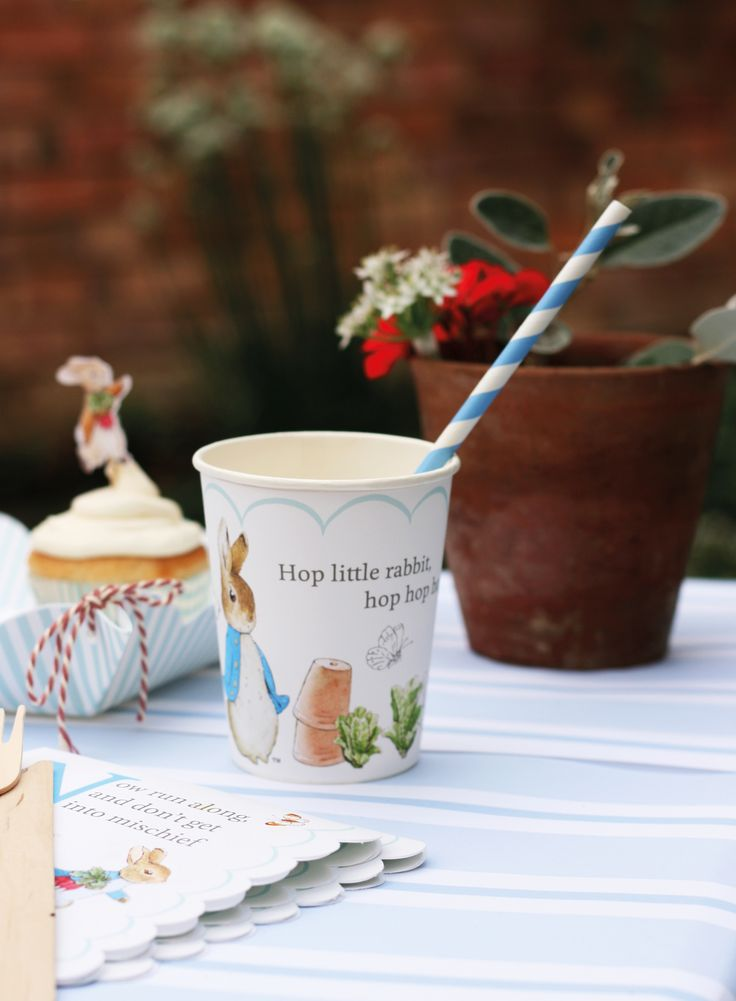 Peter Rabbit Themed Party