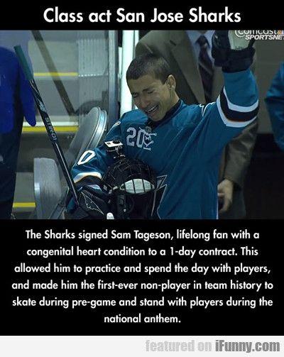 Class Act San Jose Sharks...