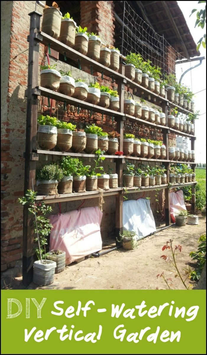 Learn how to build a self-watering vertical garden from recycled plastic bottles!
