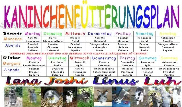 Mein neuer Fütterungsplan - wir haben eingekauft... - Kaninchen - Forum by sweetrabbits - made with Forum101 by worldweb