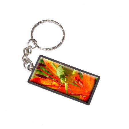 Grasshopper On Red Lily Flower Keychain Key Chain Ring, Silver