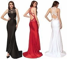 Sexy Plus Size Elegant Evening Formal Embroidery High Neck Backless Party Dress