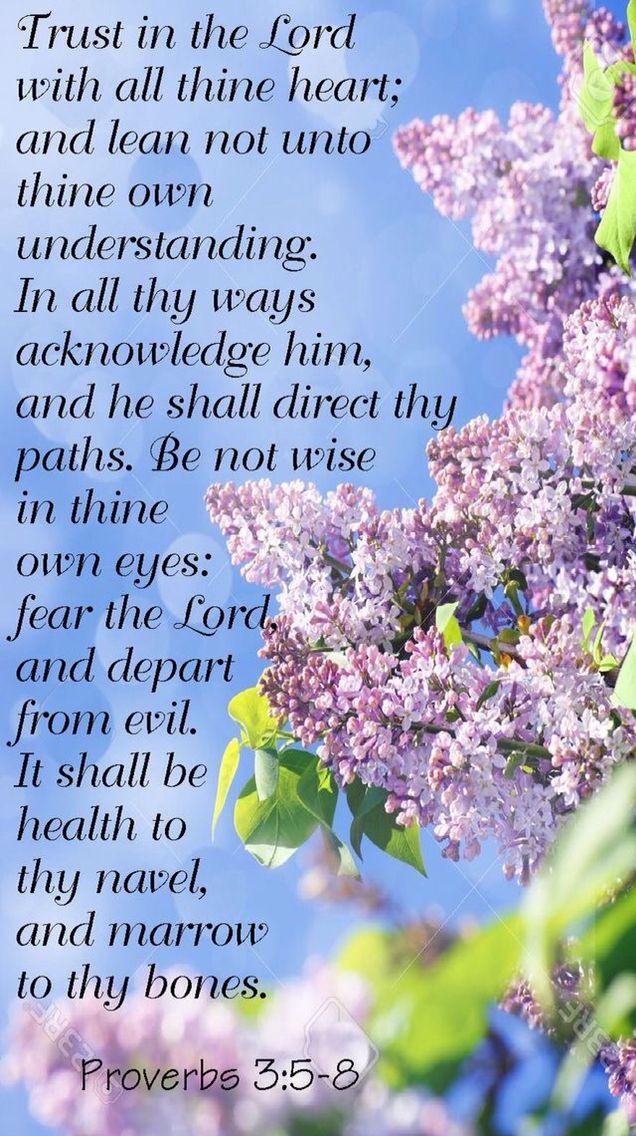 Pin By Patricia Jones On Sabbath Proverbs 30 Bible