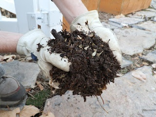 Article about how to turn poor soil into great soil for a vegetable garden.