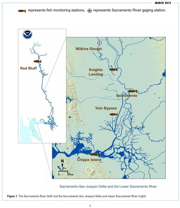 the journals of chinook salmon migration The chinook salmon spawning areas cataloged here provide a baseline that makes it possible  journal of fish and wildlife management | wwwfwspubsorg.