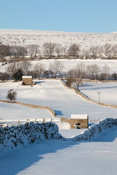 Wensleydale, Yorkshire. Can't you just picture James Herriot riding through the snow here?