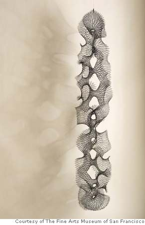 Ruth Asawa. Strong use of etchings, cross-hatching and also texture is evident through line pattern work. Great use of darker off-white colour to demonstrate shadow from a 2D drawing.