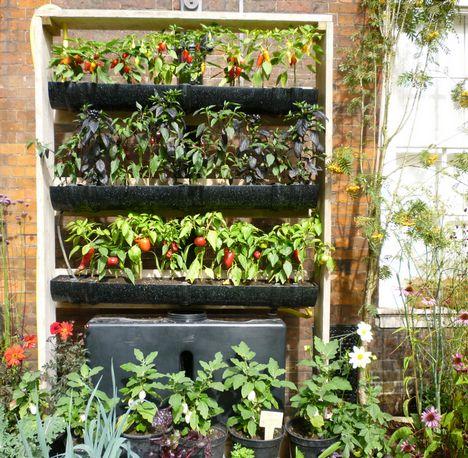 Les 11099 meilleures images du tableau horta sur pinterest for Planificateur jardin