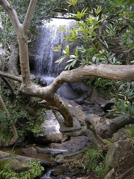 Waterfall on Paarl mountain - a nature reserve.
