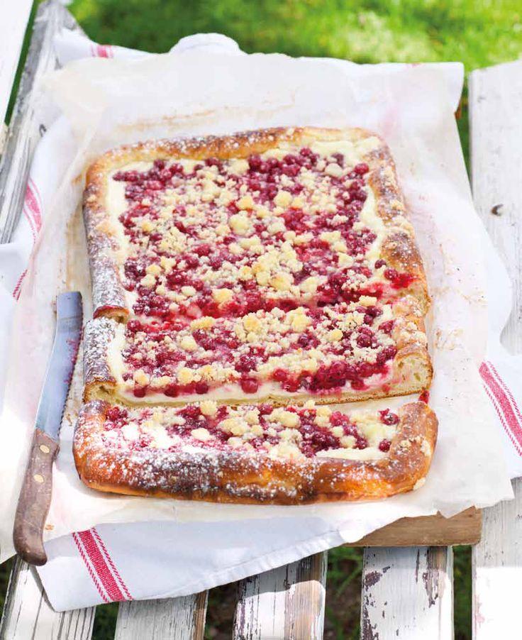 Rybízový koláč s tvarohem a drobenkou (www.albert.cz/recepty)