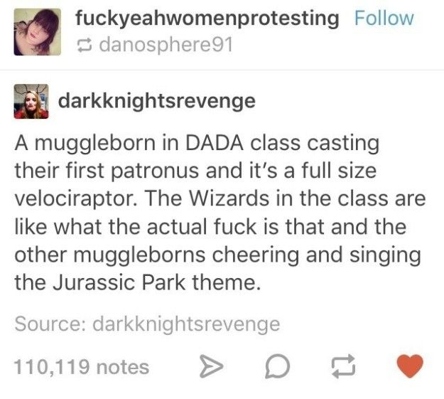 The Muggleborn whose Patronus is AWESOME: | 17 Posts About Muggleborns That Will Make Harry Potter Fans Laugh