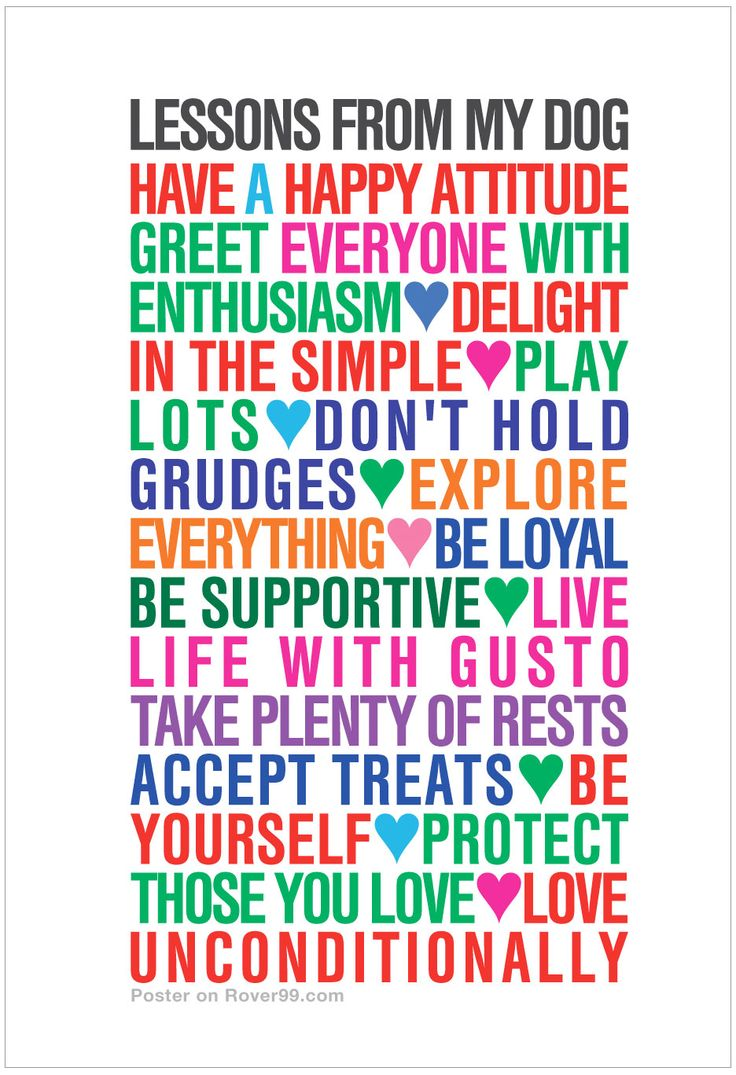 Lesson, Learned in Life-Poster – spirit OF the eye   Lesson Learned Poster