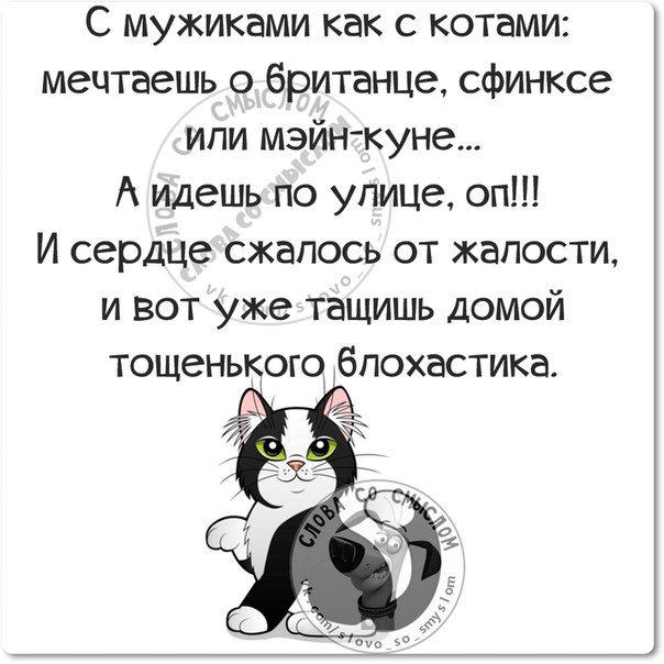 Ну и кто нам доктор??? Прикольные фразочки в картинках :) 29 штук » RadioNetPlus.ru развлекательный портал