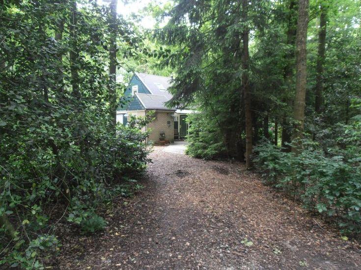 Natuurhuisje 29991 - vakantiehuis in Wateren