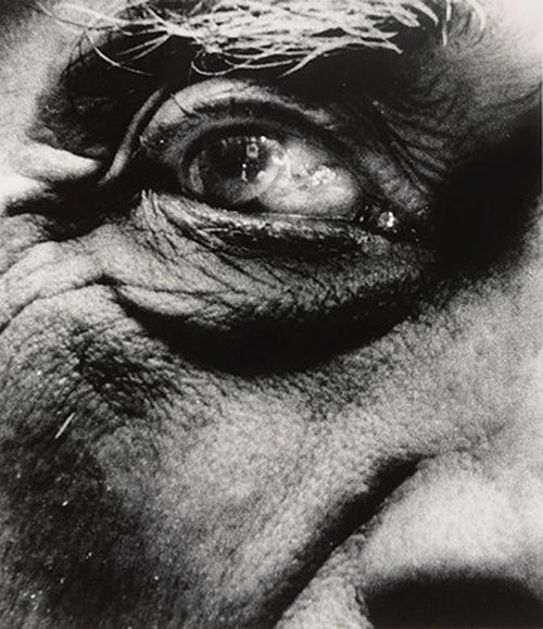 Georges Braque, 1960 by Bill Brandt