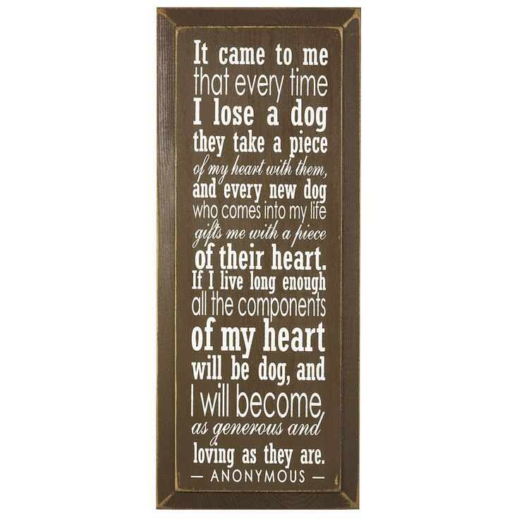 What a sweet dog quote @Jarron Remington