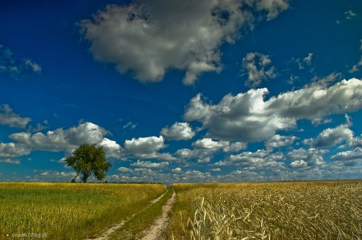 Wiejskie klimaty