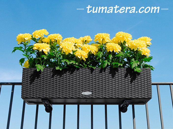 ACCESORIOS PARA MATERA INTELIGENTE Perfectas para el montaje de JARDINERAS en barandas o paredes. Encuentralas en: http://www.tumatera.co/products/soporte-jardineras-cottage-5080/