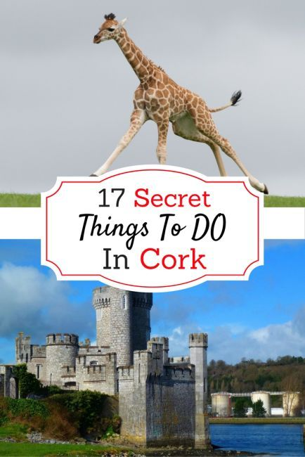 17 Secret Things to Do in Cork – Hidden Ireland World Traveler, Traveling Overseas, Travel Tips Tricks Hacks, Globe Trotter, Frequent Flying, Bucket List Trips, Family Vacation, Wanderlust, City/Country Guide, Nature, Europe