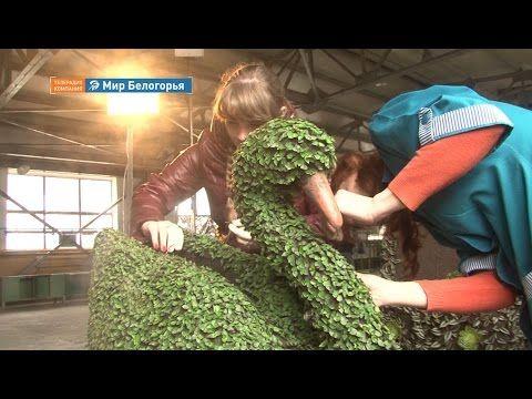 «Строить и жить». Фитоскульптура своими руками (25.04.2016) - YouTube