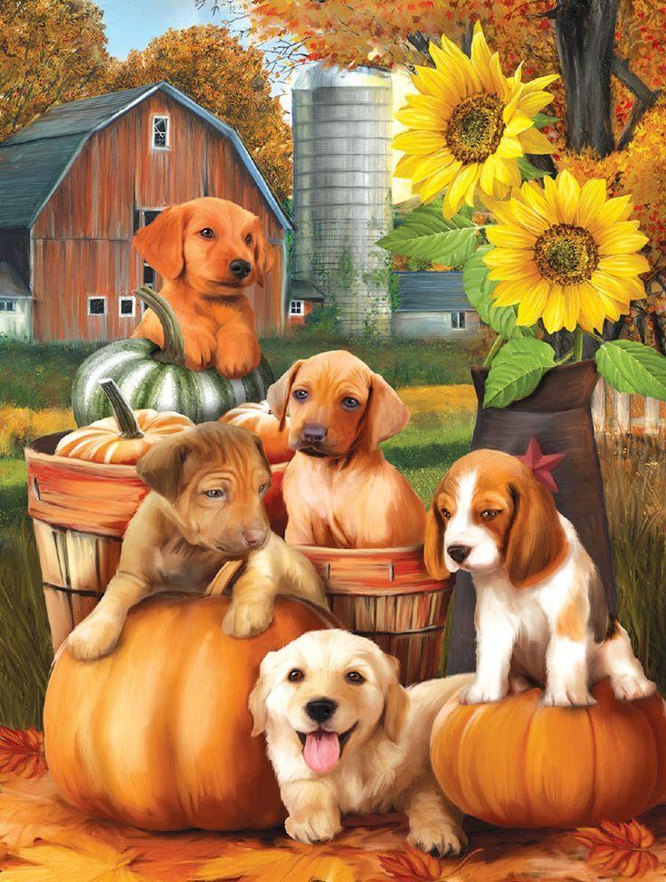 Herbst Welpen Tieregemalt Tiere Malen Tierbilder Hunde Gemalde