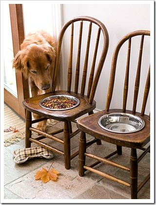 such a creative and cool idea! especially for big dogs