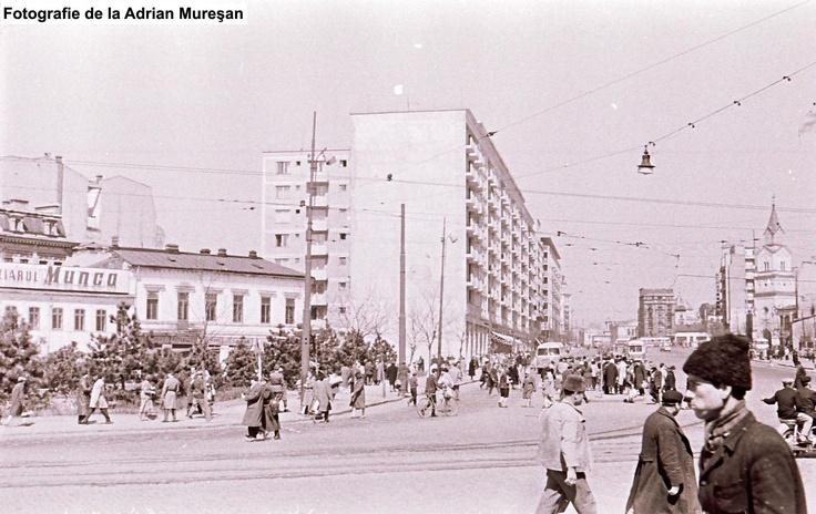 adrian-muresan-10