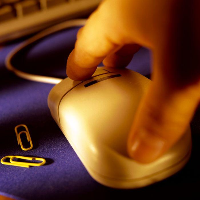 Redakcja i skład komputerowy materiałów edukacyjnych, w tym opracowywanie programów komputerowych, Ośrodek Badawczo-Rozwojowy Pomocy Naukowych i Sprzętu Szkolnego