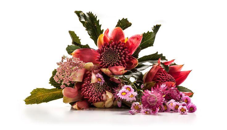 Pink waratah, paper daisy - an Australian bouquet