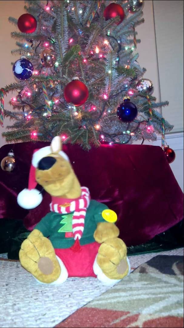 Scooby Doo Christmas Song Xmas Songs Christmas Song Christmas