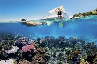 Great Barrier Reef : Heaven Under Water
