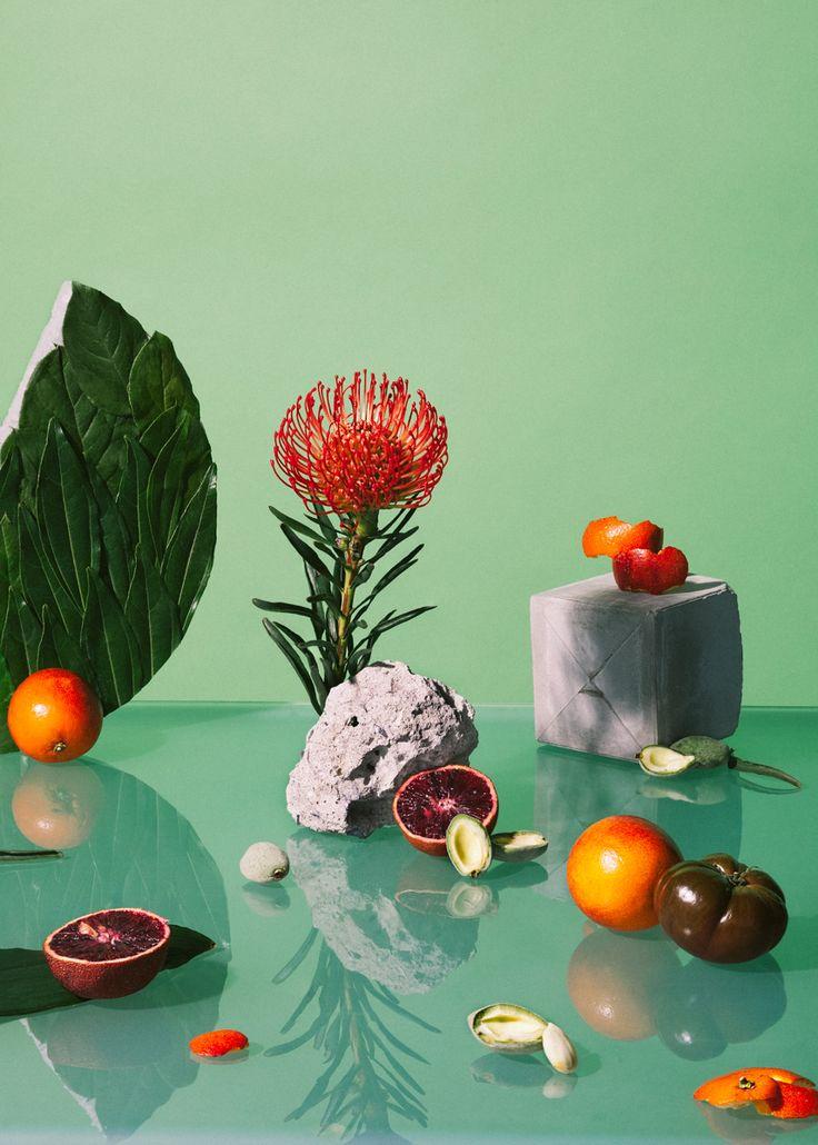 Arrangements By Melissa Gamache