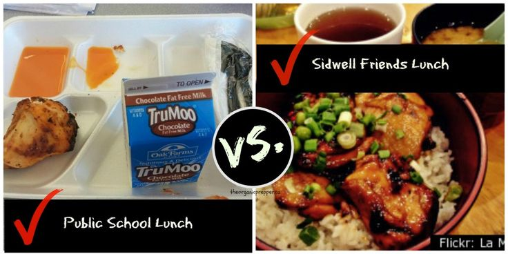 "On the left is an example of a U.S. Govt. regulated school lunch. On the right is what the children of Presidents and elites eat at their swank private school in D.C. As Orwell said in Animal Farm: ""All animals are equal, but some animals are more equal than others""."
